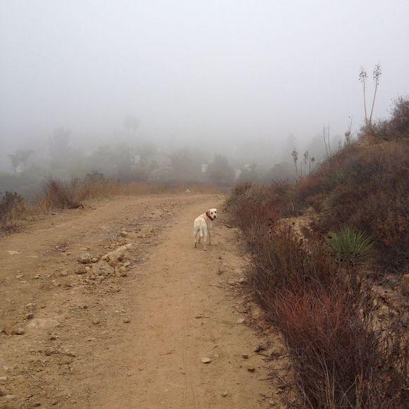 Hiking - Day 1