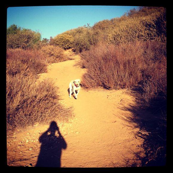 Hiking - Day 4