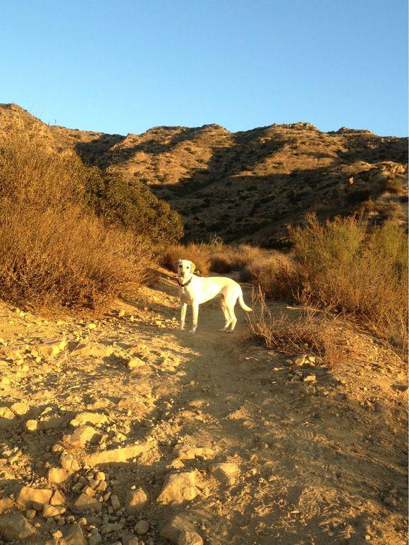 Hiking - Day 6