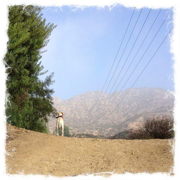 Hiking - Days 23, 24, 25, 26 & 27