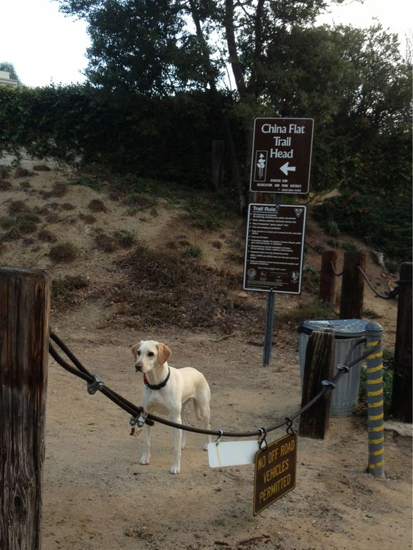 Hiking - Day 2