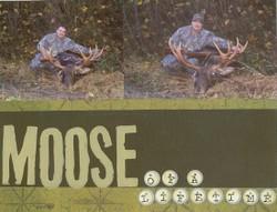 Moose_layout_1